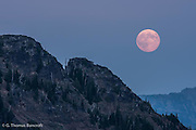 The supper moon rises over a ridge in the William O. Douglas Wilderness.