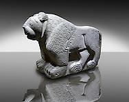 Picture & image of a Hittite Sculpture of a Lion Fron the Gate To Aslantepe, Malatya Province Turkey. An Ankara Museum of Anatolian Civilizations exhibit.