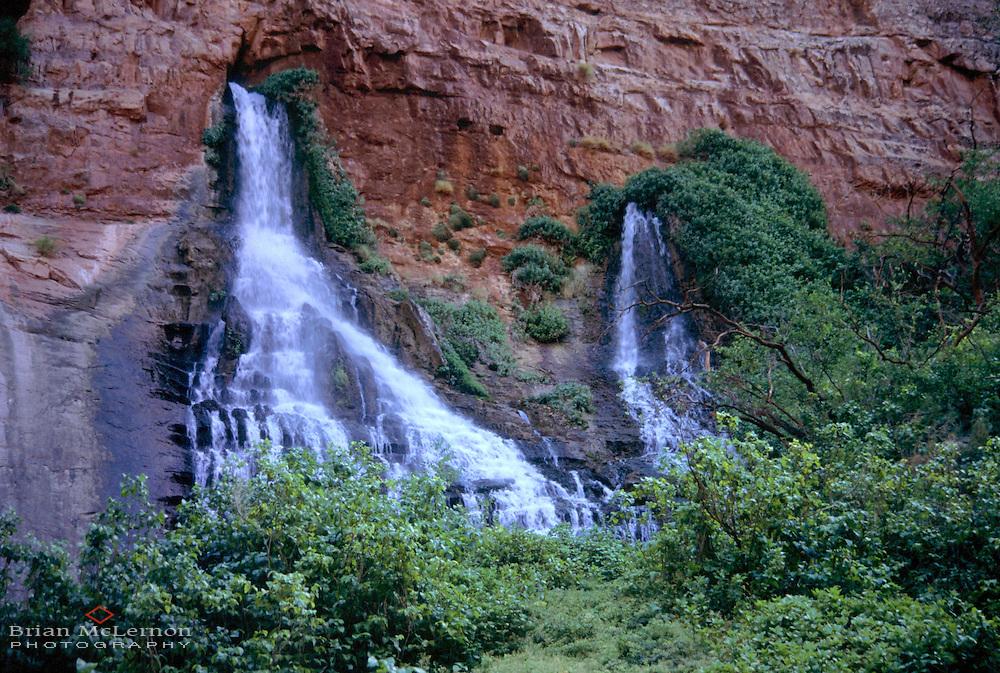 Vasey's Paradise, Grand Canyon, Arizona
