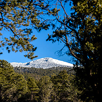 Snow caps the highest points of Mount Taylor from New Mexico highway 547 Thursday.