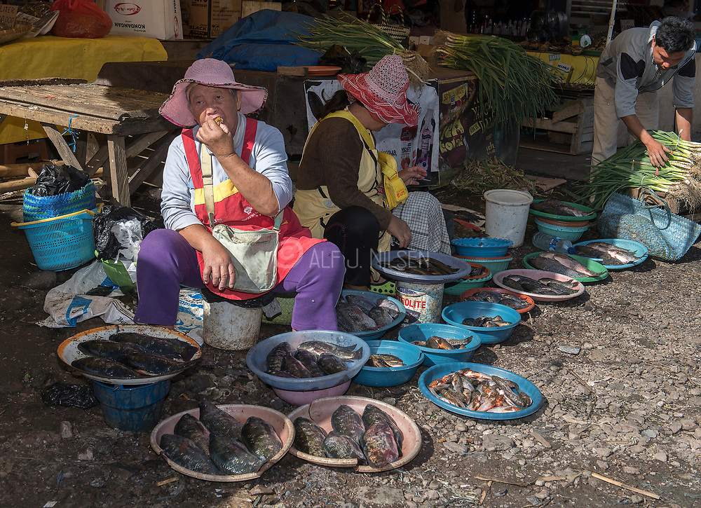 Selling fish and vegetables at Tomohon extreme market, Minahasa, north Sulawesi, Indonesia.