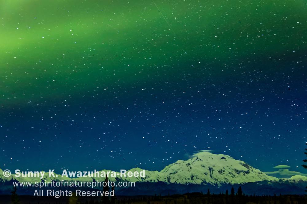 Green aurora stretches across the sky over Mt. Denali (McKinley), Denali National Park & Preserve, Interior Alaska, Autumn.