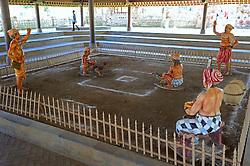 23.07.2014, Bali, IDN, Natur und Sehenswuerdigkeiten in Indonesien, im Bild Darstellung des traditionellen Hahnenkampfes im Tempel Pura Taman Ayun, Balis zweit wichtigster Tempal und nationales Heiligtum der Indonesier, Bali, Indonesien. EXPA Pictures © 2014, PhotoCredit: EXPA/ Eibner-Pressefoto/ Schulz<br /> <br /> *****ATTENTION - OUT of GER*****
