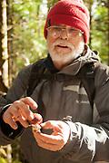 Russula  Alutacea, False Shrimp Russula