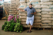 A man looks at his mobile phone whilst leaning on sacks of garlic at the wholesale fruit and veg market on 10 April 2016 in Dambulla,  Sri Lanka.