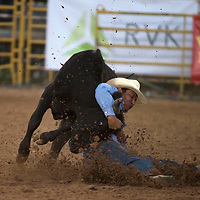 Jarrett Pinto of Chinle wrestles a steer to the ground for a score of 10.7 Thursday at the Navajo Nation Indian Rodeo in Window Rock.