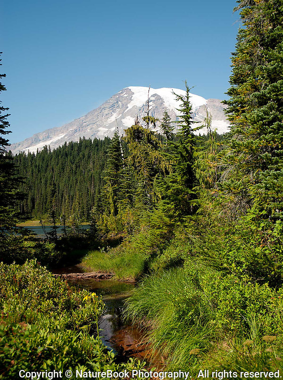 The stream and forests hint at the many environments at Mount Rainier National Park, just east of Seattle, Washington.