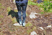 Female hiker in Zillertal alps, Tirol, Austria. Close up of the legs and boots Model release available