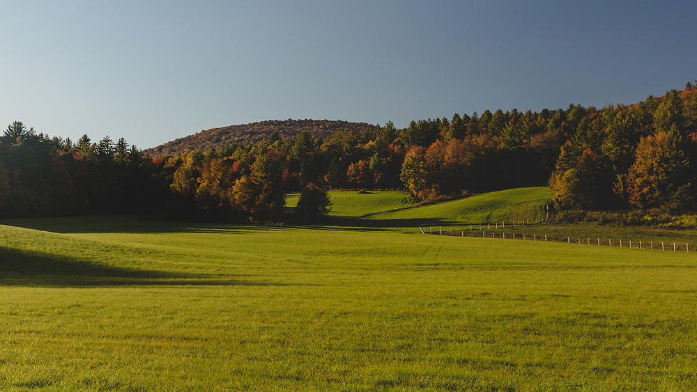 A vibrant green horse pasture in the rural hills of Hancock, Vermont.