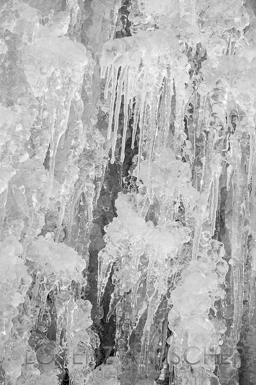 Filigree ice structures in a frozen Waterfall, Parc Ela, Grisons, Switzerland