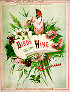 colourful book cover of 'Birds on the wing' by Giacomelli [Hector Giacomelli (April 1, 1822 in Paris – December 1, 1904 in Menton), was a French watercolorist, engraver and illustrator, best known for his paintings of birds.] Published in London by Thomas Nelson & Sons 1878. The book contains Hand-colored plates with accompanying text in verse