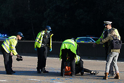Ockham, UK. 21st September, 2021. Surrey Police officers remove an Insulate Britain climate activist from the clockwise carriageway of the M25 between Junctions 9 and 10. Activists briefly halted traffic on both carriageways of the motorway as part of a campaign intended to push the UK government to make significant legislative change to start lowering emissions.