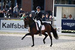 Andersen Bachmann Daniel, DEN, Blue Hors Zee Me Blue<br /> Longines FEI/WBFSH World Breeding Dressage Championships for Young Horses - Ermelo 2017<br /> © Hippo Foto - Dirk Caremans<br /> 03/08/2017
