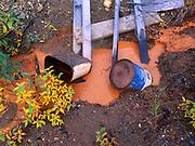 Acid mine drainage flowing through abandoned mill site, Kantishna Mining District, Denali National Park, Alaska.