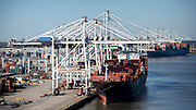 At the Port of Savannah's Garden City Terminal Thursday, Dec. 1, 2016, all 22 ship-to-shore cranes had booms down working six vessels, moving 800 containers per hour in Savannah, Ga. The Port of Savannah will welcome four additional Super-post Panamax cranes on Sunday, for a total of 26 cranes – more than any other terminal in the U.S.(GPA Photo/Stephen B. Morton)