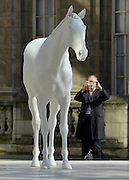 © Licensed to London News Pictures. 05/03/2013. Westminster, UK A man stops to photograph the sculpture. The British Council - the UK's international organisation for educational opportunities and cultural relations - unveils a new sculpture, The White Horse by Mark Wallinger, outside its headquarters on The Mall in London, as it announces £7 million of extra investment in its work to connect the best of the UK's creative talent with the world. The statue, made of marble and resin, is a life-size representation of a thoroughbred racehorse. It has been created using state-of the-art technology in which a live horse was scanned using a white light scanner, producing an accurate representation of the animal. It will be on display for two years, before touring overseas. Photo credit : Stephen Simpson/LNP