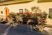 Long wooden wagon displays flowers, in Mojstrana, Slovenia, Europe. In 1991, Slovenia declared full sovereignty from Yugoslavia. 80% of its 2 million people speak Slovene. In 2004, Slovenia joined NATO and the EU (European Union), and later adopted the Euro € currency. Slovenia is the richest Slavic nation per capita.