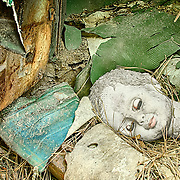 A still life image of a doll head on the floorboards of a junked car in the Old Car City junkyard in Georgia.