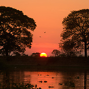 Sunset over the banks of the Pixiam river. Pantanal, Brazil.