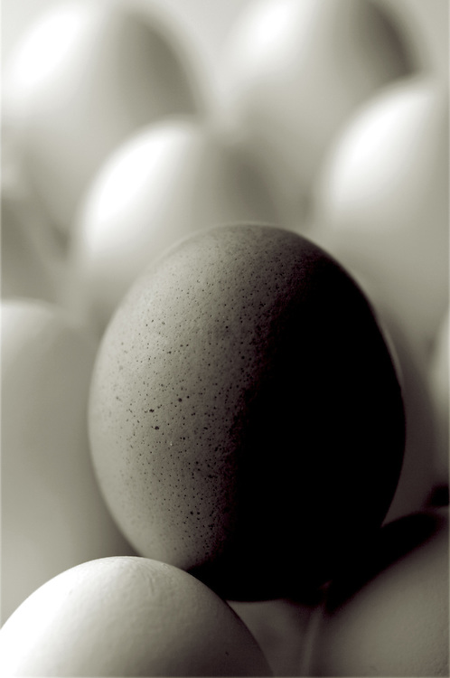 one brown egg standing in the middle of all white ones,vertcile