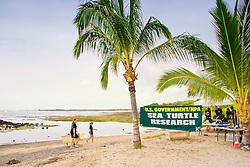 Sea Turtle Research station, set up by researcher George Balazs, PhD, NOAA National Marine Fisheries Service (NMFS), Hawaii Preparatory Academy (HPA) students and teachers (NOAA/HPA Marine Turtle Program), and ReefTeach volunteers at Kaloko-Honokohau National Historical Park, Kona Coast, Big Island, Hawaii, Pacific Ocean.