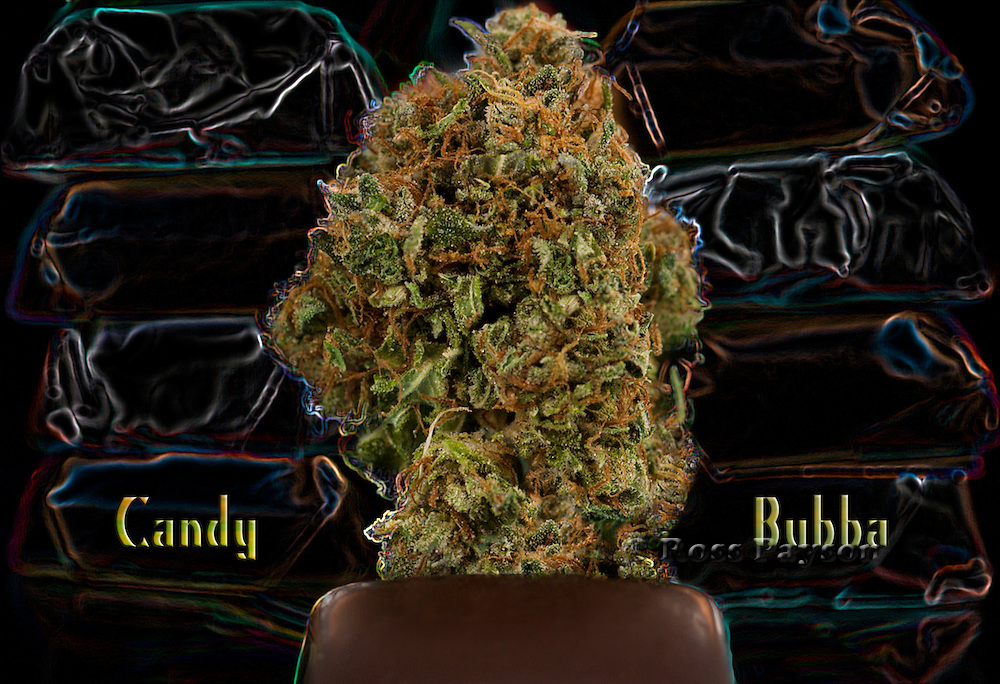 Professional nug and cannabis photography.
