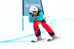 21.01.2017, Hahnenkamm, Kitzbühel, AUT, FIS Weltcup Ski Alpin, KitzCharity Trophy, im Bild Michaela Dorfmeister (Gösser) // during the KitzCharity Trophy of FIS Ski Alpine World Cup at the Hahnenkamm in Kitzbühel, Austria on 2017/01/21. EXPA Pictures © 2017, PhotoCredit: EXPA/ Serbastian Pucher