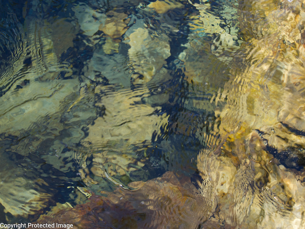 The chilly water was deeper here, causing the more abstract look of this image. One of my favorites.