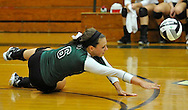 Midview High School at Elyria Catholic High School volleyball on August 27, 2013. Image © David Richard and may not be copied, posted, published or printed without permission.