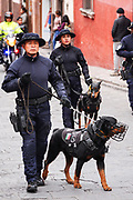 Mexican Military Police dog teams parade through the streets to celebrate the 251st birthday of the Mexican Independence hero Ignacio Allende January 21, 2020 in San Miguel de Allende, Guanajuato, Mexico. Allende, from a wealthy family in San Miguel played a major role in the independency war against Spain in 1810 and later honored by his home city by adding his name.