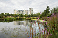 East Village housing at site of Olympic Village, Stratford, London. Environmental enrichment designed into housing estate.