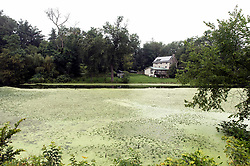 Aug.15, 2017 - Newburgh, New York, U.S. -  Scientists warn that global climate change is bringing an increase in harmful blue-green algae blooms to freshwater ponds, lakes and streams.(Credit Image: © Brian Cahn via ZUMA Wire)