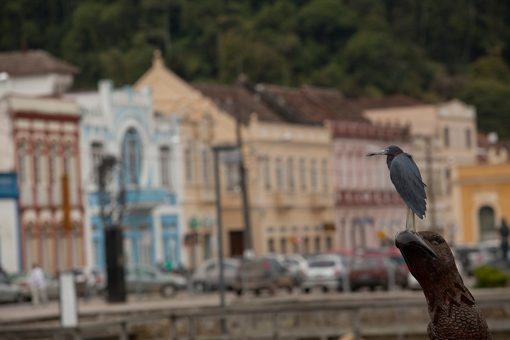 Sao Francisco do Sul_SC, Brasil...Sao Francisco do Sul, Santa Catarina...Sao Francisco do Sul, Santa Catarina...Foto: LUIZ FELIPE FERNANDES / NITRO