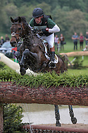 DRUMBILLA METRO ridden by Simon Grieve at Bramham International Horse Trials 2016 at  at Bramham Park, Bramham, United Kingdom on 11 June 2016. Photo by Mark P Doherty.