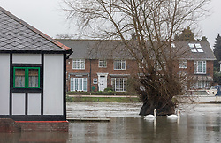© Licensed to London News Pictures. 04/02/2021. London, UK. Flooded streets and property in Laleham, Surrey. Flooding in parts of Laleham and Chertsey in Surrey as rising flood water continues to rise around riverside properties in the area. The Uk is set to be battered by heavy rainfall, flooding and snow storms this weekend as the Met Office issue warnings that snow could hit most of the country in the coming days. Photo credit: Alex Lentati/LNP
