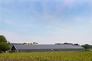 Nederland, Aalten, 28-8-2019Zonnepanelen op het gesaneerde dak van de stal van een nieuwe, moderne varkensboerderij, varkensstal, varkensschuur . De oude asbestplaten zijn tegen de muur aangebracht.Foto: Flip Franssen