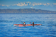 Kayakers in Seattle's Elliott Bay