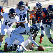 Wide Receiver Steve Everette (7) of Fullerton College, recovers a loose ball from a punt return fumble in the second half of Fullerton's 35-14 win over Orange Coast College.