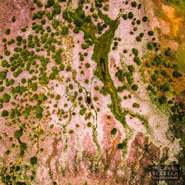 A beautiful image captured from directly overhead, showing the colours and exquisite detail of seasonal billabongs and watercourses in a flood plain in the Victoria River District, Northern Territory of Australia.<br /> <br /> 1:1 Square Print, available in 24in (61cm) to 50in (127cm) sizes.<br /> <br /> Limited Edition of 25 only<br /> <br /> Code: SATV0001