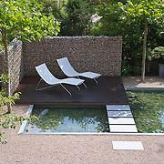 Modern Garden 385