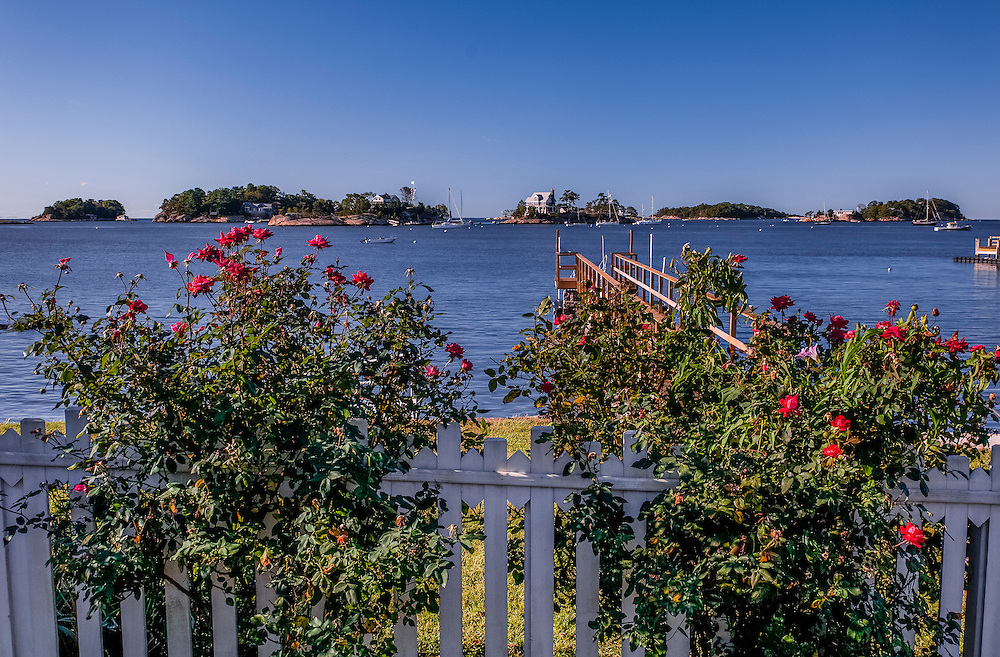 Rose bushes in bloom and views to the Thimble Islands, Stony Creek, Branford, CT