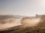 A rural landscape, seen during a misty, early morning sunrise, near Montalcino in the Tuscany landscape, Italy