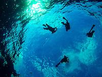 Maui Beach Vacation 2015 - Scuba Divers Descending into the Molokini Crater<br /> <br /> ©2015, Sean Phillips<br /> http://www.RiverwoodPhotography.com