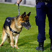 A Eskisehir Police agent with his dog is seen during their UEFA Europa League third Qualifying round first leg soccer match Eskisehirspor between Olympique Marseille at Ataturk stadium in Istanbul Turkey on Thursday 02 August 2012. Photo by TURKPIX