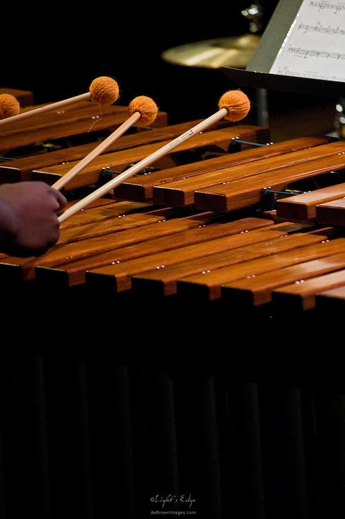 A marimba player during Rowan University's 2010 presentation of The Percussion Ensemble and Marimba Band.