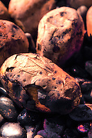 Yaki Imo - Japanese Sweet Potatos, commonly sold from carts and trucks on the streets during autumn and winter in Japan