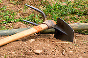 Vineyard worker tools, a pick and shovel In the vineyard Le Pavillon of M Chapoutier on the Hermitage hill, sandy and pebbly soil.   Domaine M Chapoutier, Tain l'Hermitage, Drome Drôme, France Europe