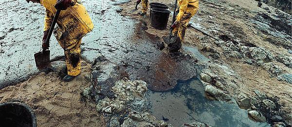 Frankrijk, Batz sur mer, 10-01-2000Olievervuiling en schoonmaak door vrijwilligersFoto: Flip Franssen/Hollandse Hoogte