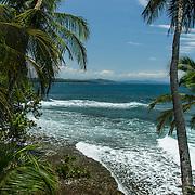 Central America, Centro America, Latin America, Latin, tropical, Costa Rica, Puerto Viejo, Caribbean, Manzanillo Wildlife Refuge, Manzanillo,