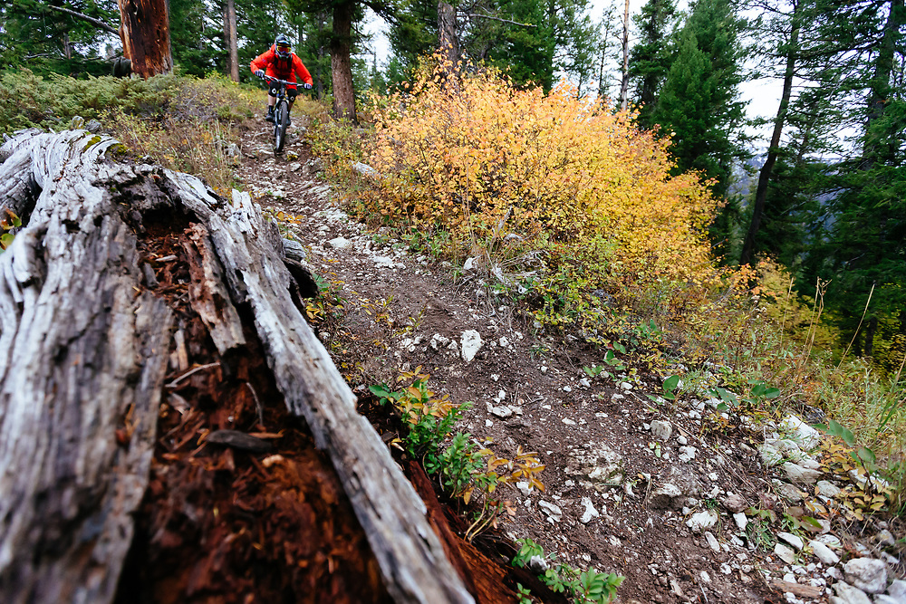 Andrew Whiteford descends the Lithium single track off of Teton Pass near Wilson, Wyoming.